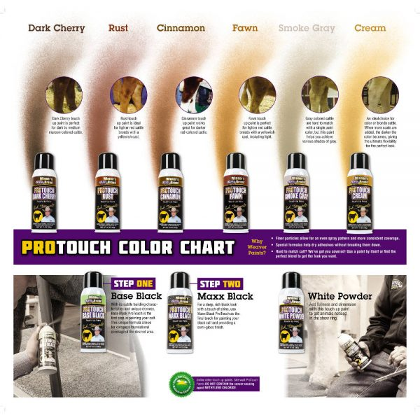 ProTouch color chart